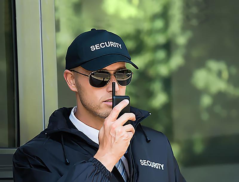 Охранники - кто они? Картинка для статьи