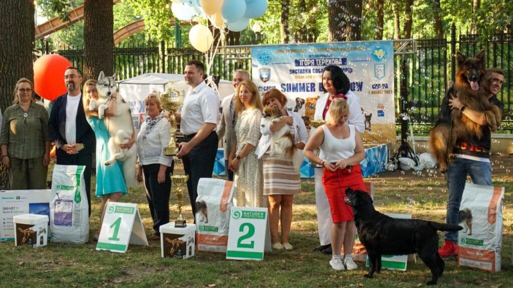 Кубок Геннадия Кернеса. Выставка собак. Выставка собак