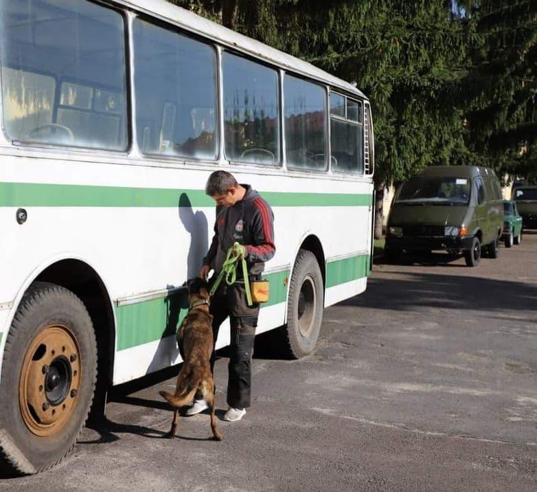 Обучение собак поиску взрывчатых веществ